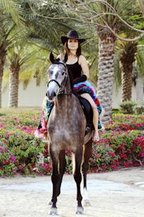 Sandy Horse 2